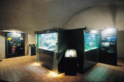 ORLA, observatoire des lacs alpins, salle des aquariums